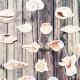 Kagylógyűjtemény | papír díszítőelem készlet