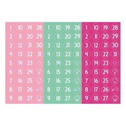 Számos | A6 matrica – rózsaszin-menta-pink